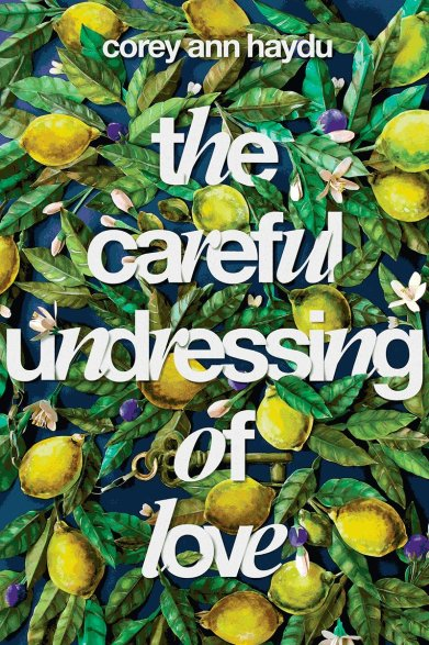 The Careful Undressing of Love by Corey Ann Haydu
