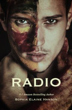 4.5.17 Radio