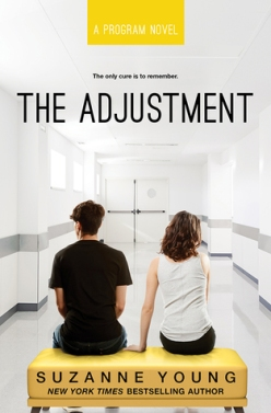 the adjustment 4.18