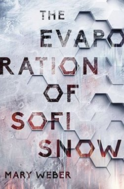 evaporation of eva snow 6.6