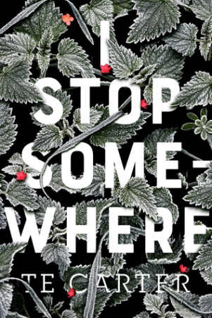 I Stop Somewhere by TE Carter